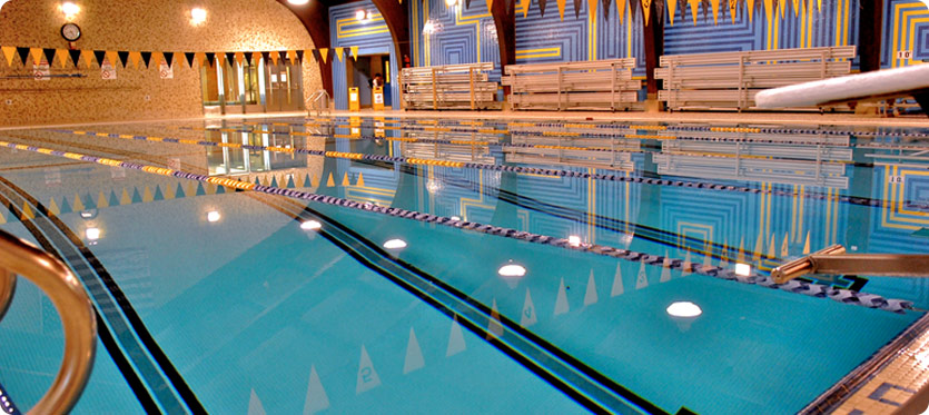 adult aquatics darien ymca