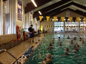 Adult Aquatics - Darien YMCA