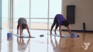 Yoga for Back Pain Darien YMCA